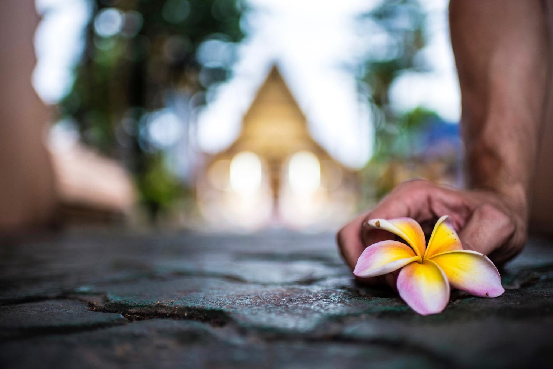Making Choices: Thailand vs Vietnam • We Blog The World