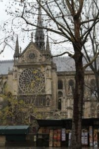 Notre-Dame view (1)