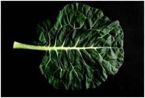 History of Collard Greens Extends Far Beyond North America...